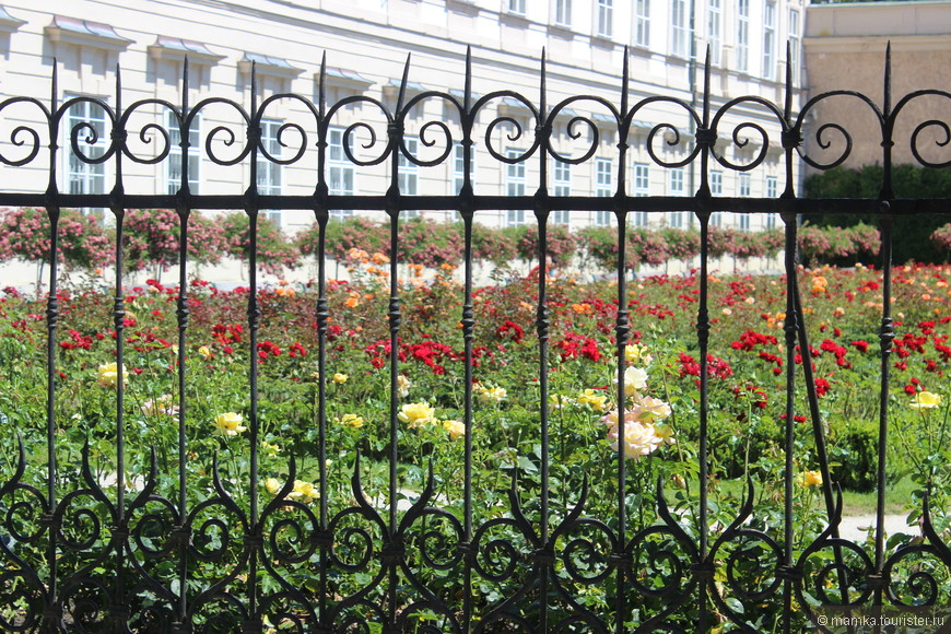 Сама я , в отличии от многих женщин, не любительница цветов))) Мне здесь оградка больше нравится