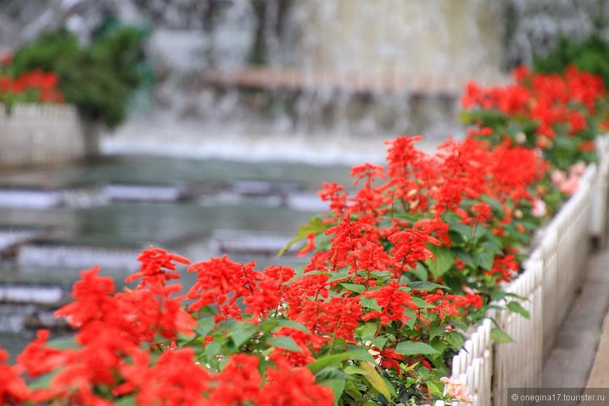 Лично я лучше буду созерцать цветы, ловить в кадр птичек и прислушиваться к плеску рыбок в пруду, чем кружить среди каменных джунглей.