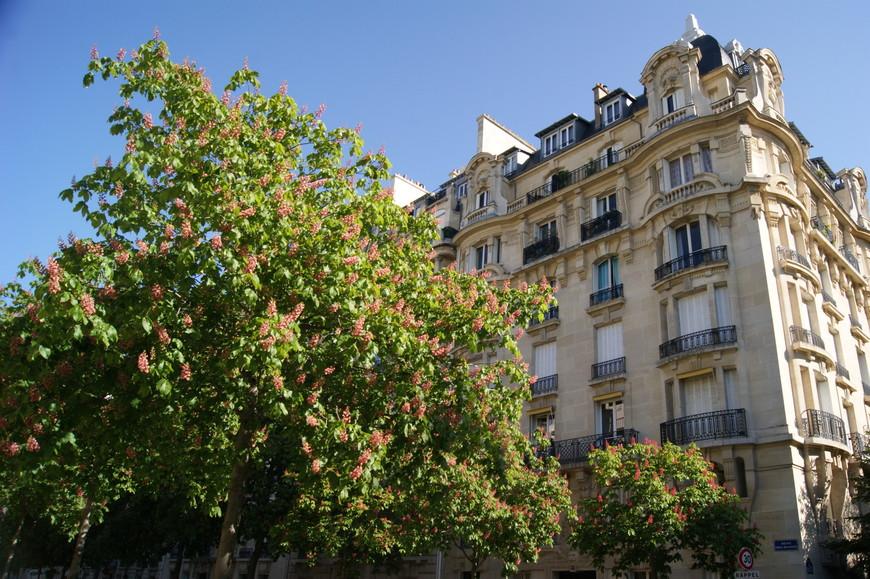 Кажется, что в Париже просто нет некрасивых домов!