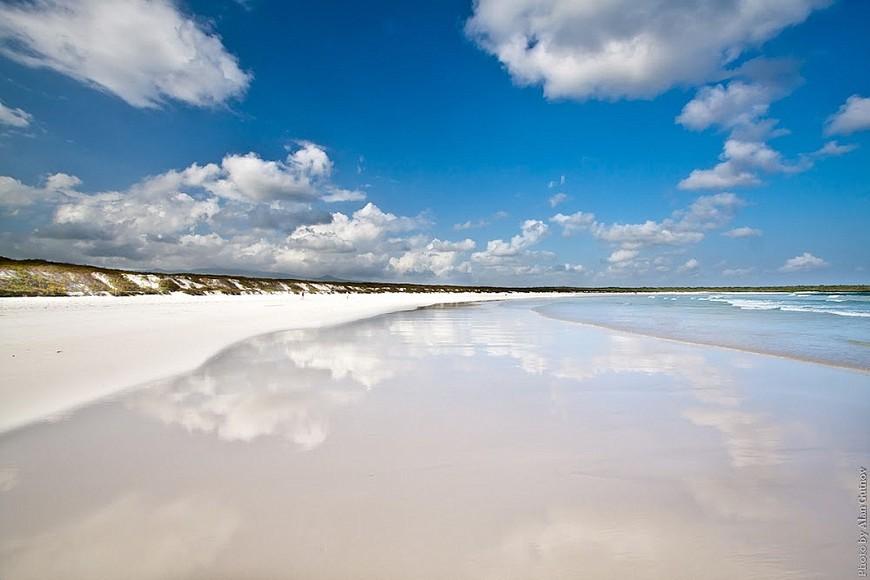 Пляж Тортуга Бэй.jpg