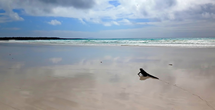 пляж!.JPG