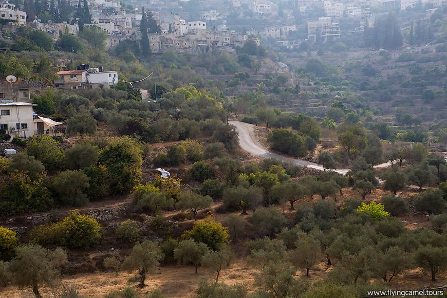 Баттир одна из самых живописных деревень в Палестине