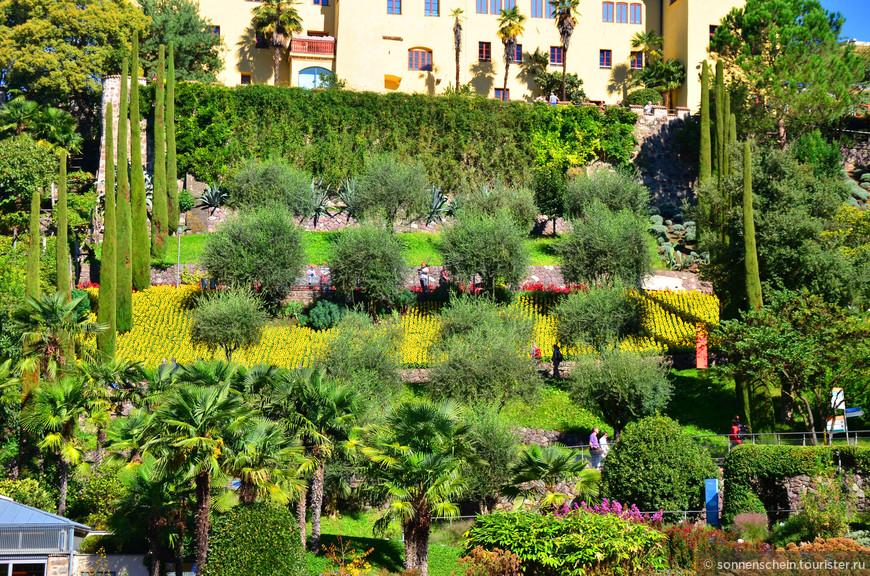 1977 год - ветхий замок и имущество бывшего имения Дацер берет на себя автономная провинция Больцано (Больцано, Южный Тироль). В 1988 году инженер Манфред Эбнер придумывает идею создания ботанического сада в Мерано.