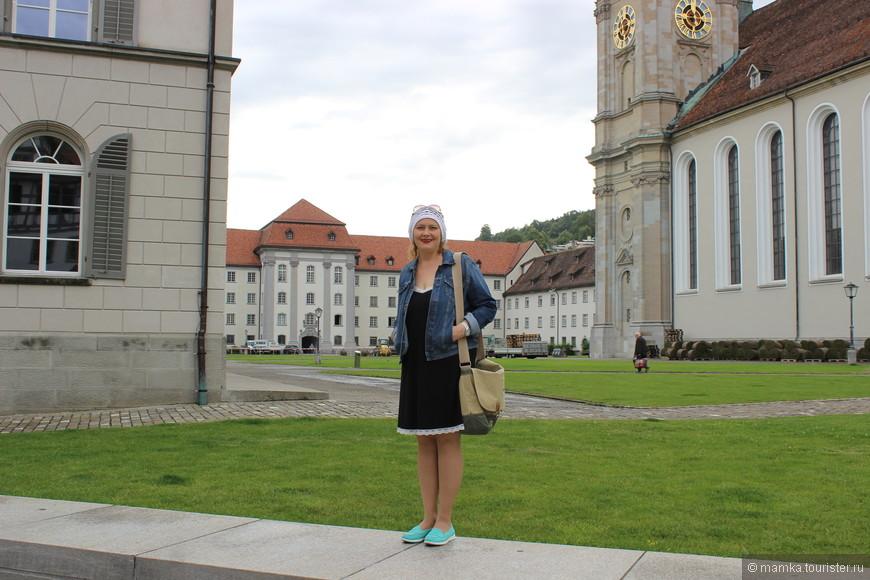 В период правления аббата Вальдо из Райхенау была основана библиотека, считающаяся и по сей день одной из самых богатых в Европе. В ней хранятся многочисленные (около 160 тысяч) средневековые рукописи
