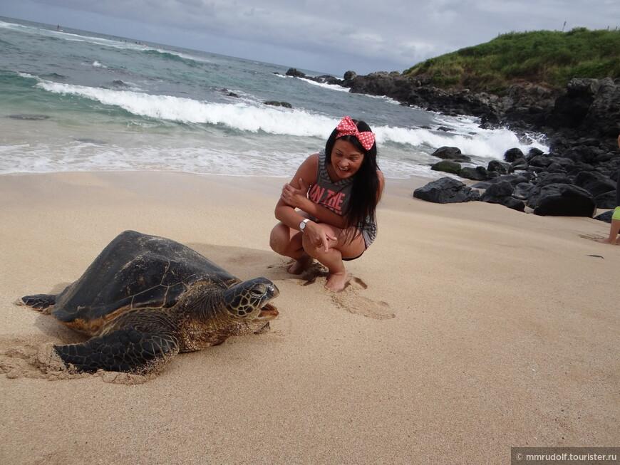 черепаха болтает с Элей