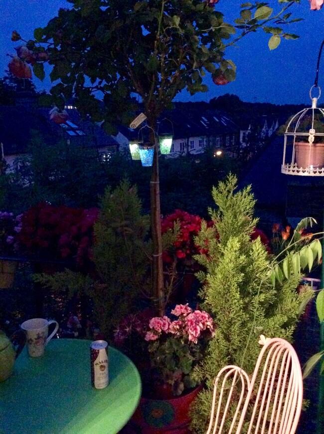 Ночью здесь так романтично! Нередко я читаю всю ночь до пробуждения птиц.