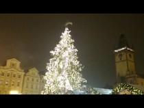 В Праге сегодня зажгли рождественскую ёлку., 03:33