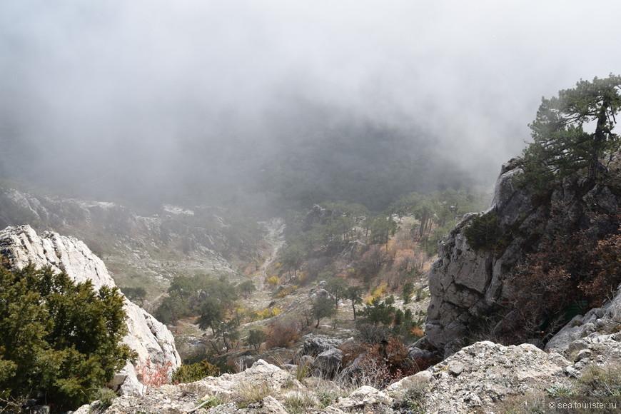 Скалы и туман.