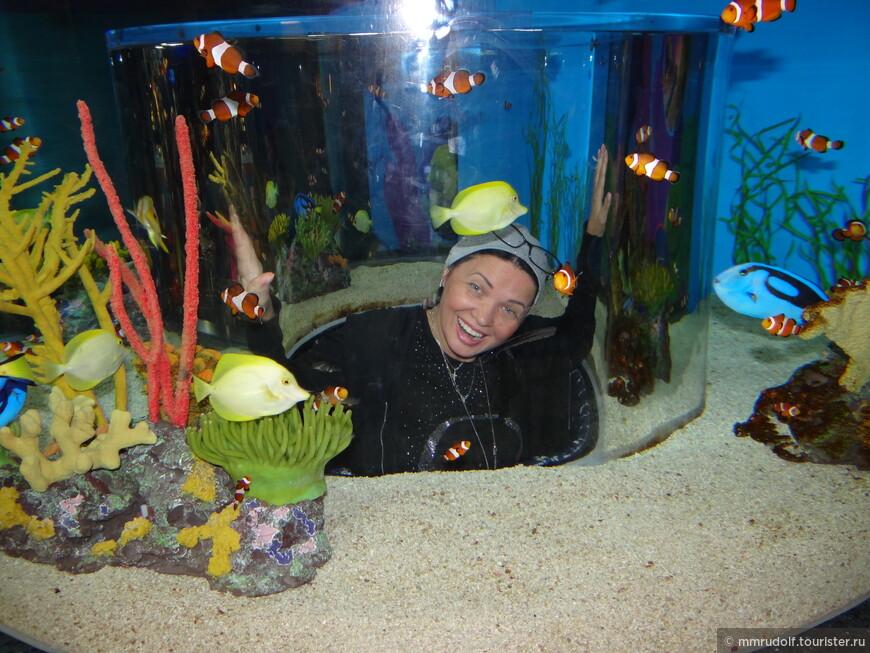 здесь обзорная кабинка в виде цилиндра,есть даже труба,по ней ползком можно пролезть через аквариум с небольшими акулами