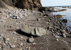 Сахалин. Юяньки: берег окаменевших фаллосов