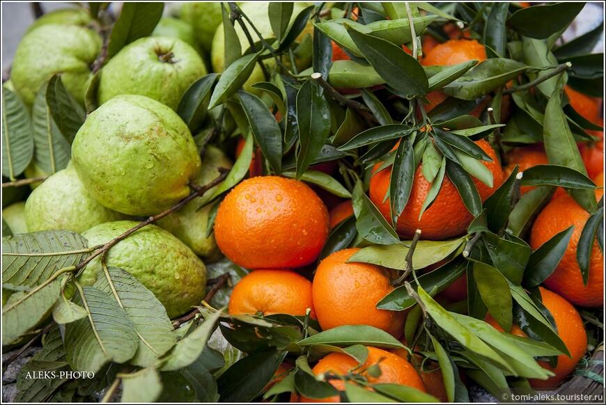 Со свежестью для меня неразрывно связан и образ фруктов, которые в изобилии можно увидеть посреди зимы на лотках уличных торговок в конусообразных шляпках, которых турист может увидеть в этом районе. А ведь фрукты - это тоже здоровый образ жизни...