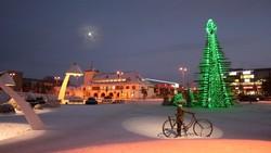 Названы города с самыми необычными новогодними ёлками