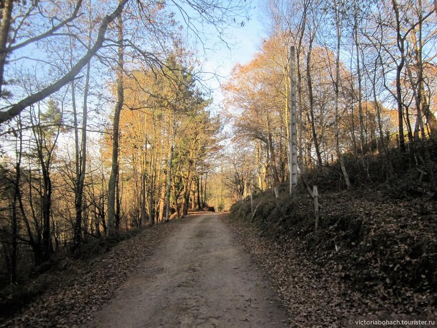 декабрь - поздняя осень в Астурии.
