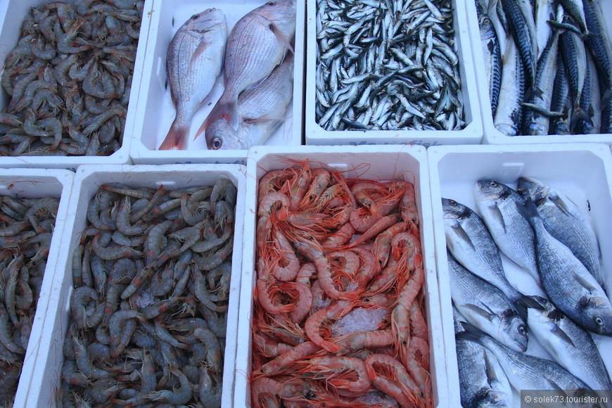 Свежепойманная рыбка-для кого то очередной ужин. Но на удивление Черногория  совсем не рыбная страна. Черногория -мясная!