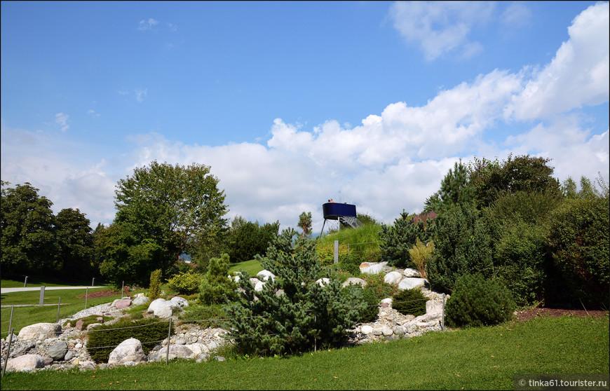 Альпийская горка в саду.