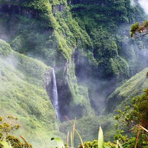 Национальный парк Реюньон. Мозаика