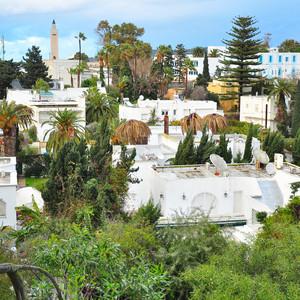 От мифа к мифу. Тунис