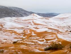 Снег выпал в Сахаре впервые за 37 лет
