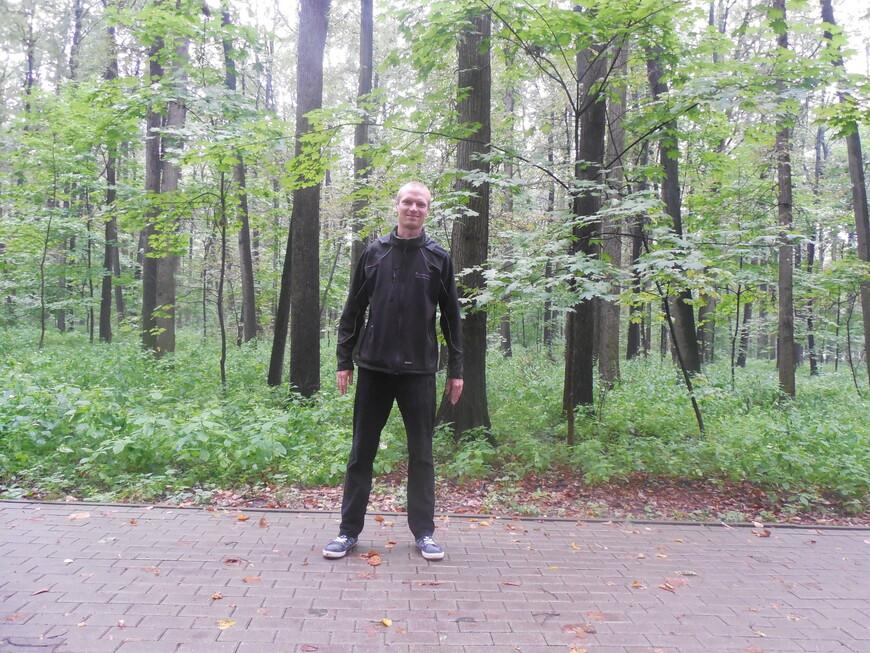 Филёвский парк (парк «Фили»)