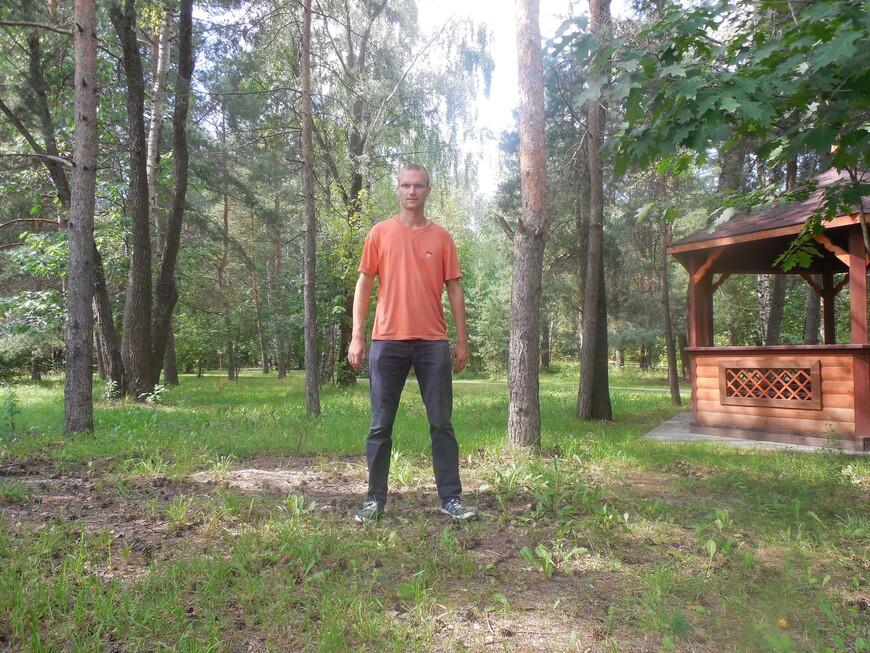 Остров-заповедник «Серебряный бор»: парк «Ветеран» - беседка