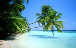 Турпоток из РФ в Доминикану вырос на 85%
