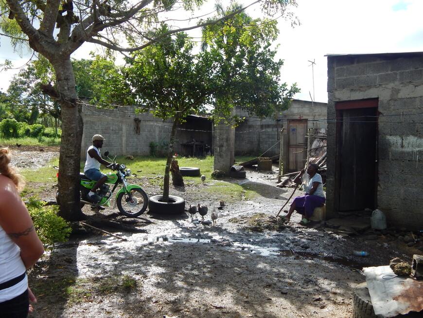 Нашей первой остановкой была плантация сахарного тростника .Доминикана-аграрная страна,выращивают  здесь тростник,рис,ананасы,манго,бобы,табак,какао,а люди в основном живут бедно и беззаботно.Работой себя они не утруждают,могут часами сидеть около своего домика,мужчины играют в домино или нарды,поют да танцуют.