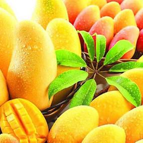 Mango Tour