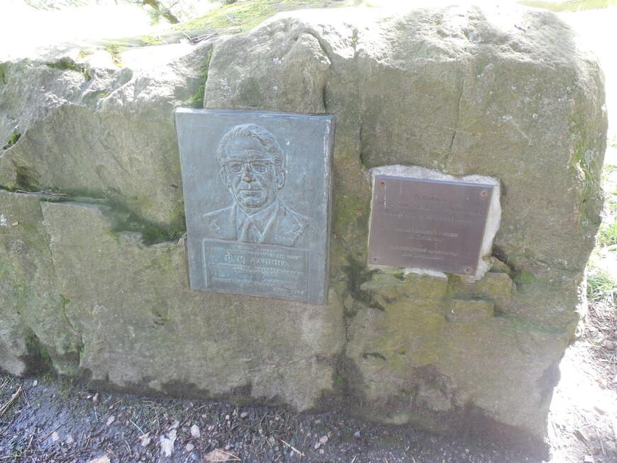 Японский сад в Ботаническом саду - мемориальная доска член-корреспонденту П. И. Лапину