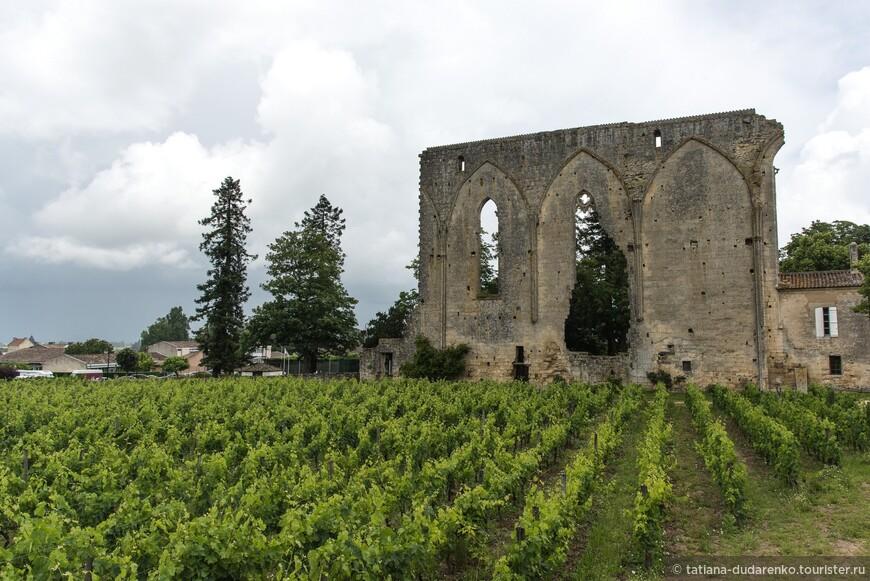Виноградники Сент-Эмильона