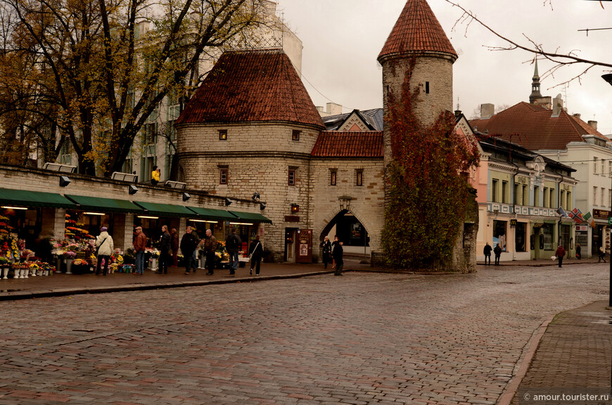 Рядом с Вирускими воротами находится цветочный рынок с большим выбором товара.