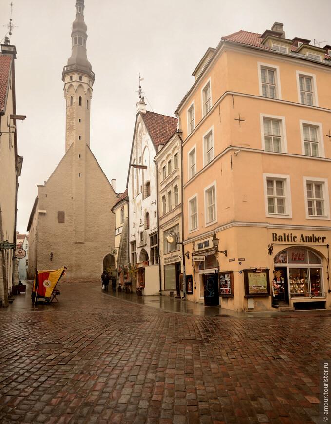 Ратуша выплывает из-за поворота улица как огромный броненосец, доминируя над окружающими домами. Она была построена в 14 веке и вначале была маленькой, одноэтажной, но как только Таллин стал богатеть и приобретать значимый вес в Прибалтике, в начале 15 века стала выглядеть, так, как её можно видеть сейчас.