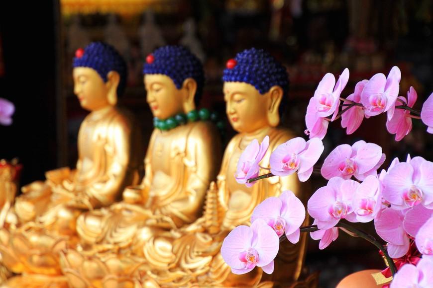 Если посчитать количество Будд в главном храме, то их явно будет намного больше заявленной цифры.