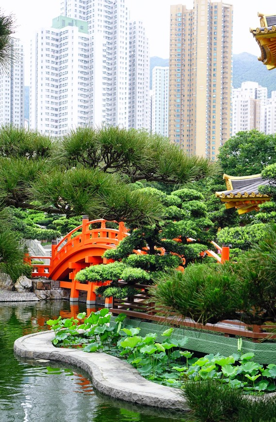 Контраст с небоскребами только добавлял парку изящества.