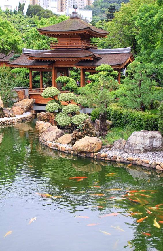 Из любого павильона, с любого мостика открывается красивая панорама на сад.