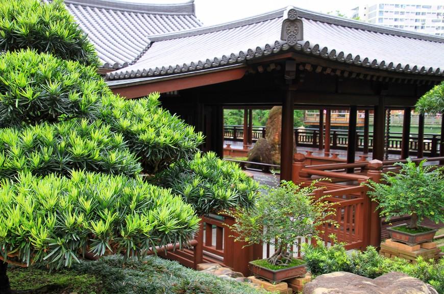 Несмотря на небольшие размеры, в саду можно провести несколько часов, получив огромное удовольствие от увиденного.