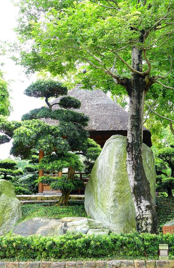 Сад очень гармоничный, здесь царит тишина и спокойствие, красота природы и умиротворение.