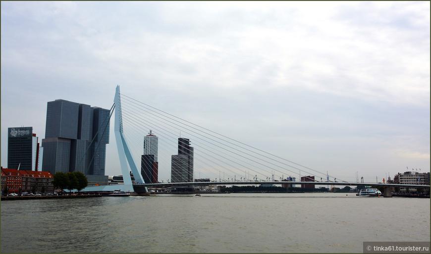 """Мост Эразма, одна из главных визитных карточек Роттердама. В народе его окрестили """"Лебедь-мост""""."""