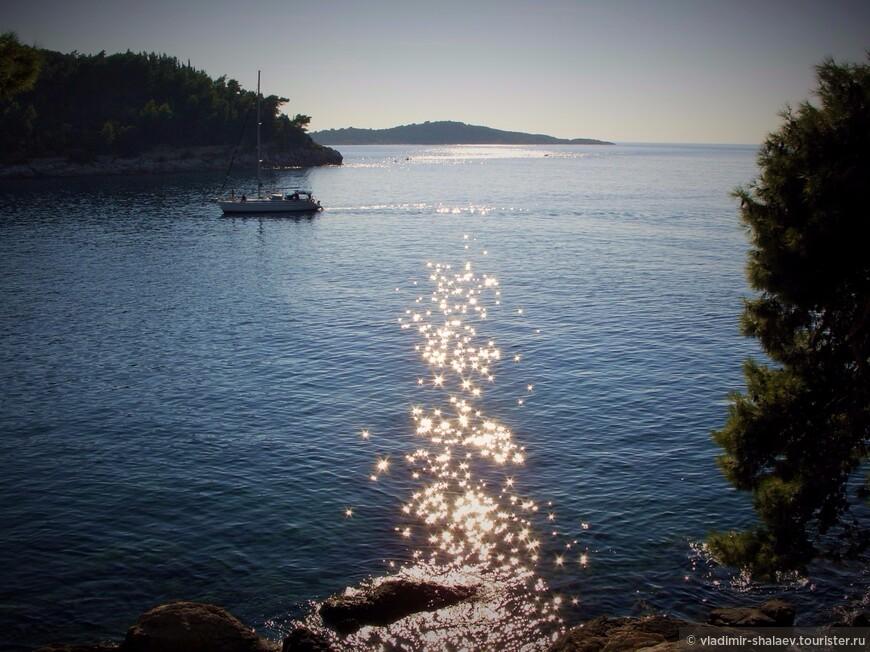 Солнечные зайчики в воде.