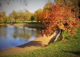 Осень в Ботаническом саду