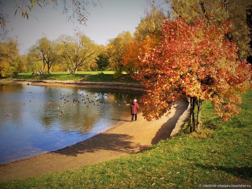 """""""Отражение природы. Осень в воду засмотрелась..."""""""