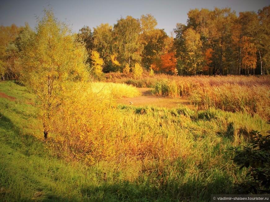 """""""Осень лесу каждый год платит золотом за вход."""""""
