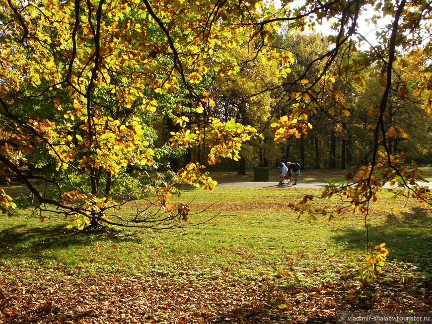 """В старом парке заблудилась Осень..."""