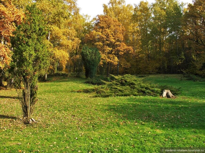"""""""Осень на опушке краски разводила, по листве тихонько кистью проводила."""""""