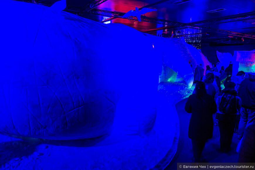 А это гордость организаторов - ледяной кит в натуральную величину