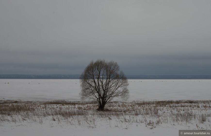 Вид Плещеева озера в пасмурный весенний день.