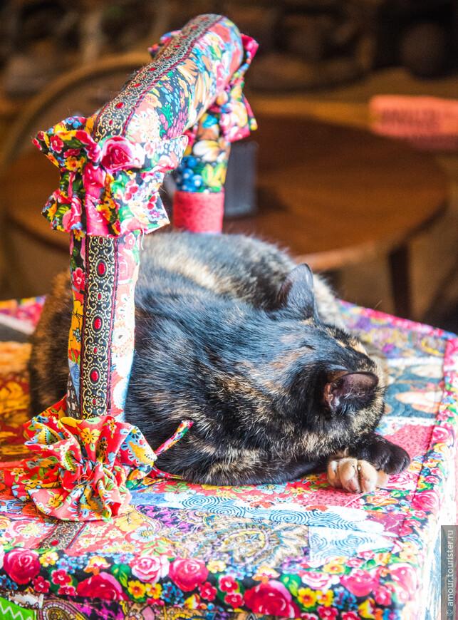На большом тряпичном утюге спит разноцветная кошка.