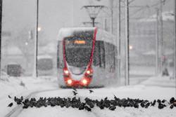 Снегопад парализовал аэропорты и транспорт Стамбула
