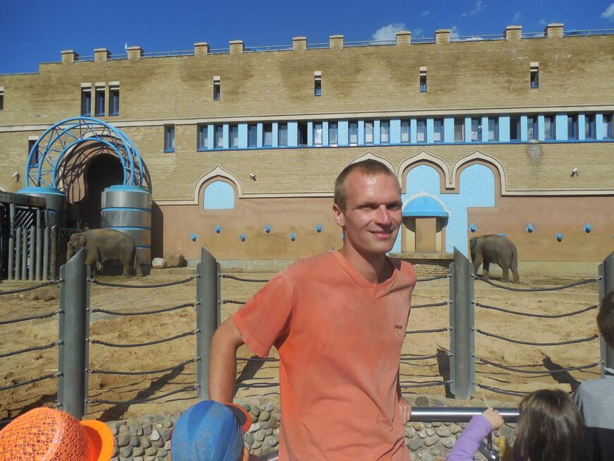 Московский зоопарк - слоны