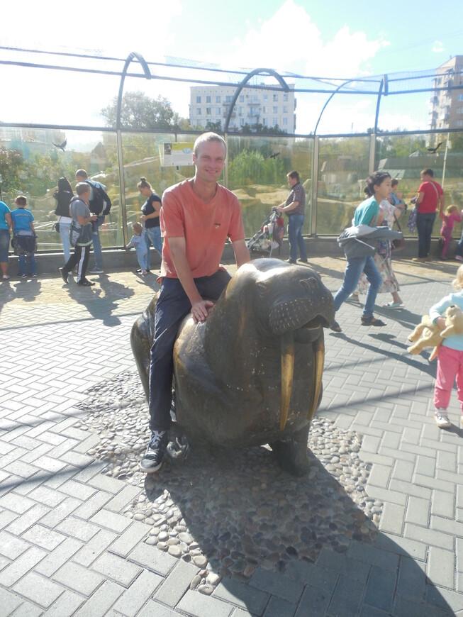 Московский зоопарк - скульптура моржа