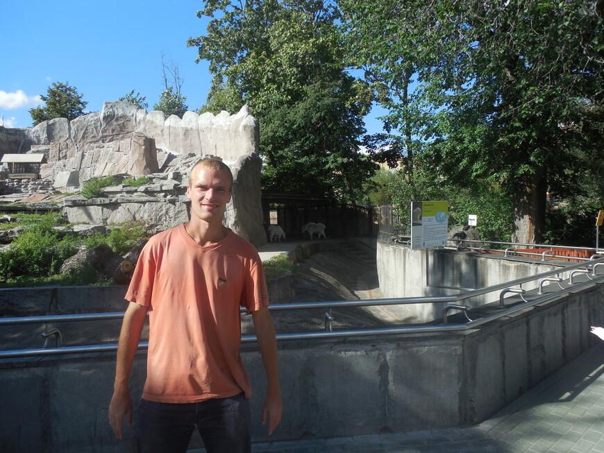 Московский зоопарк - волки